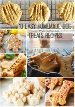 10 Easy Homemade Dog Treats Recipes
