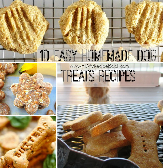 10 easy homemade dog treats recipes fill my recipe book 10 easy homemade dog treats recipes for older dogs the softer treats all different ingredients some 2 ingredients and 3 healthy treats as well forumfinder Image collections