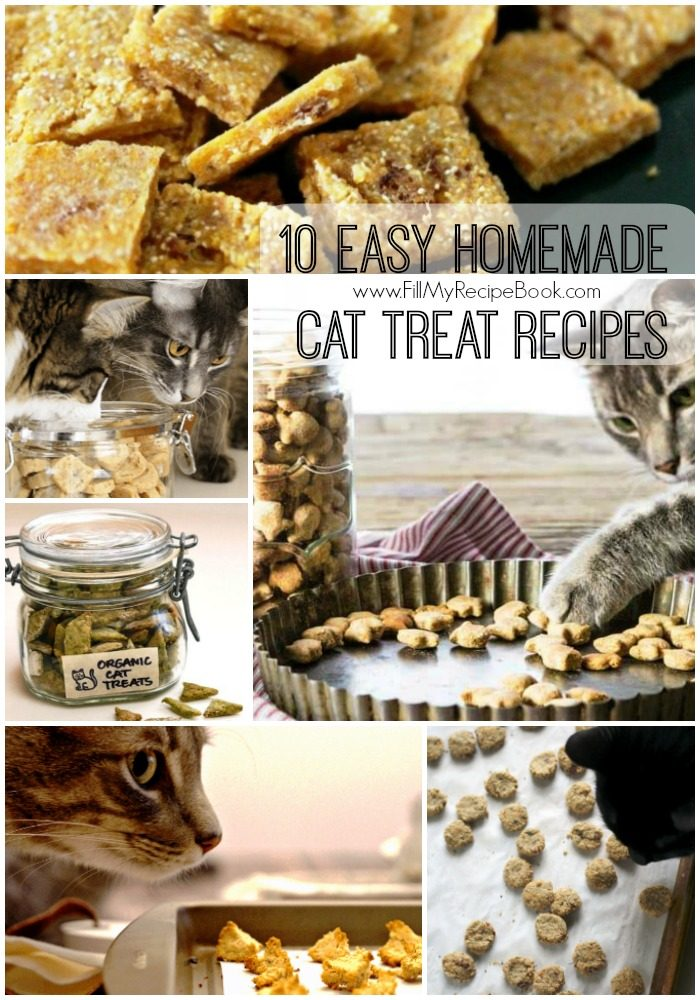 10 easy homemade cat treat recipes fill my recipe book get the book forumfinder Choice Image
