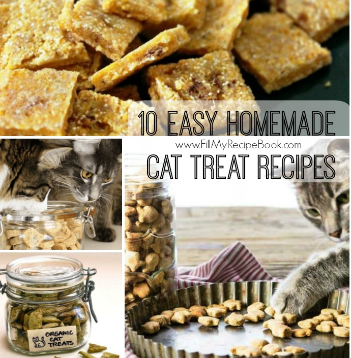 10 easy homemade cat treat recipes fill my recipe book 10 easy homemade cat treat recipes to make and store for that special treat for your cats they love catnip so make them enjoy forumfinder Choice Image