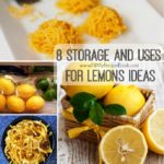 8 Storage and Uses For Lemons Ideas